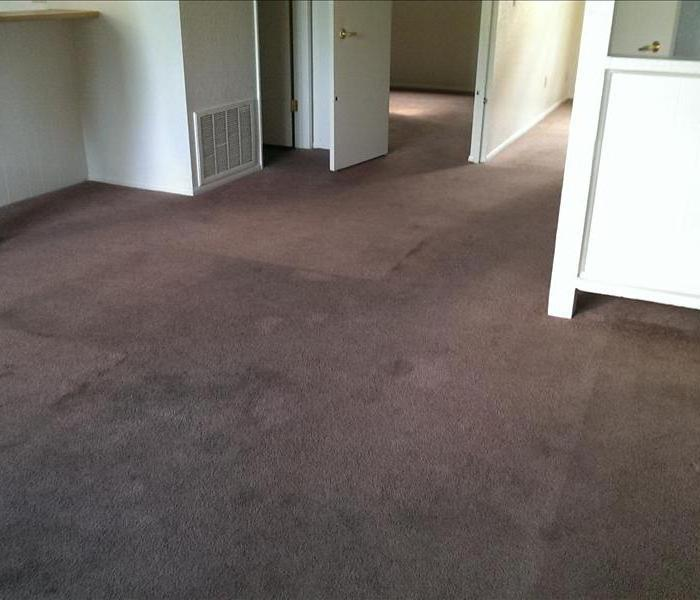Carpet Cleaning Apartments in La Crosse County Before
