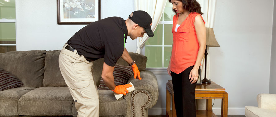 La Crosse, WI carpet upholstery cleaning